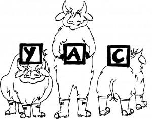 YAC logo 11.7.06